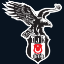 Besiktas e-Sports Club - MSI Team | Region IWCI Gewinner